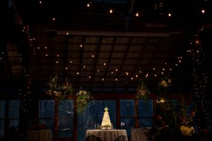 A few strands of bulbs help accentuate the theme during a wedding reception. Photo Credit: Rae Leytham Photography