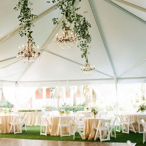 Peach and Pearl Events